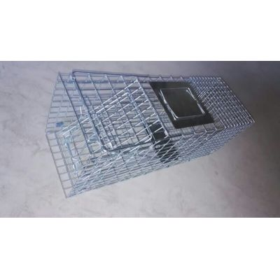 Animal Evictions,Animal Removal,Animal Trapping,Cage Traps,Pest control,hardware,wildlife control,wire mesh,wire products