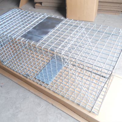 Animal Evictions,Animal Removal,Animal Trapping,Cage Traps,Metal,Pest control,hardware,steel,wildlife control,wire mesh,wire products